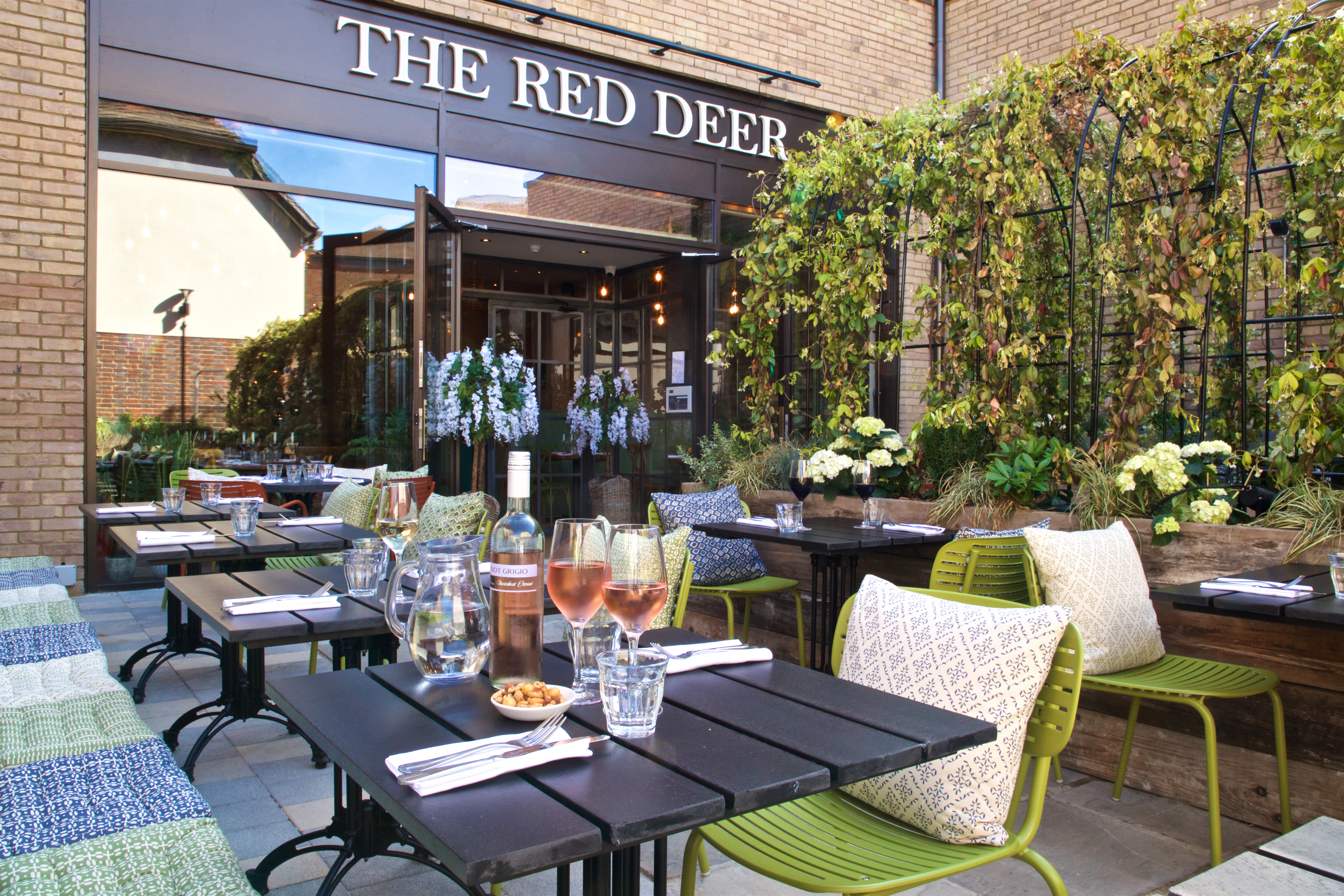 The Red Deer at Piries Place Outside